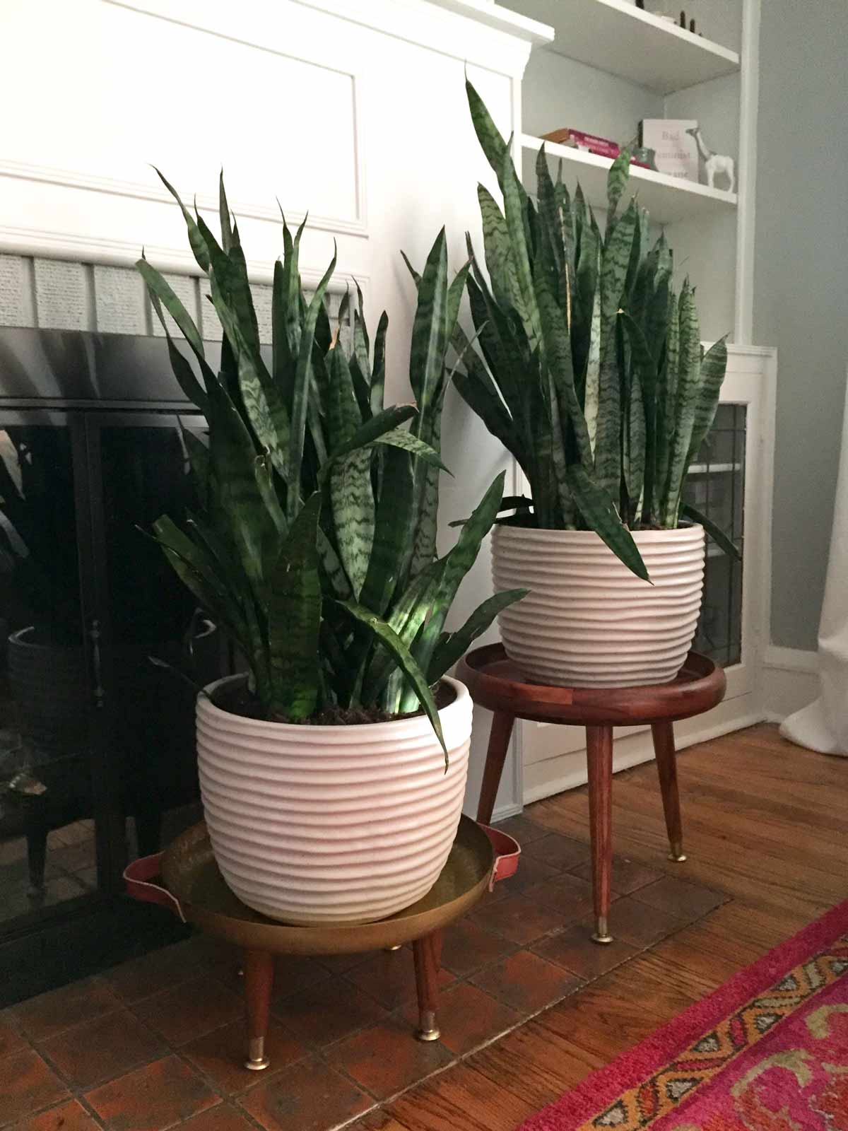 DIY Mid Century Modern Plant Stands